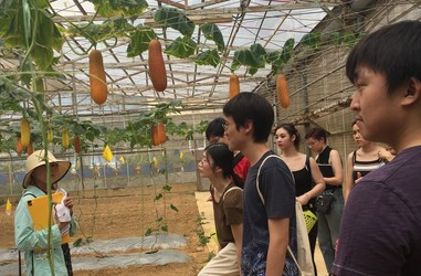 Eco Tour of Zen Organic Farm