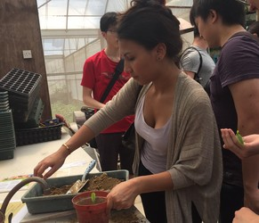 Students learn how to transplant seedlings