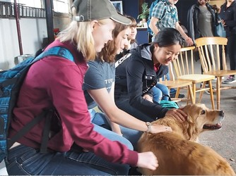 Students play with a dog at one of the service organizations